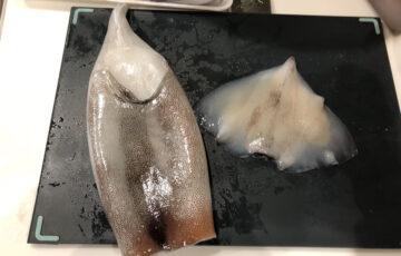 イカの塩辛作り